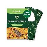Legona® - Schlupfwespen gegen Lebensmittelmotten / 4X Trigram-Karte à 1...