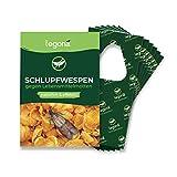 Legona® - Schlupfwespen gegen Lebensmittelmotten / 6X Trigram-Karte à 3...
