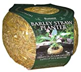 Mosquito Dunks Medium Clear Water Barley Straw Teichpflegezubeh-r 1139